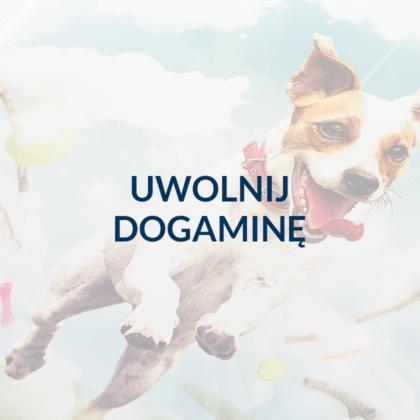 Hasło reklamowe dla kampanii promującej przysmaki dla psów.