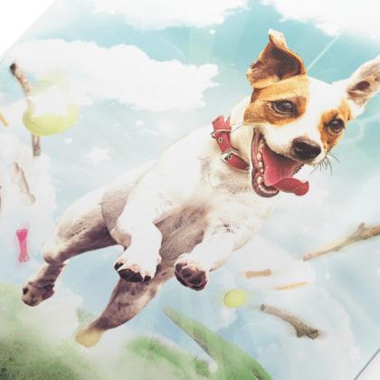 Hasło reklamowe dla psich przysmaków