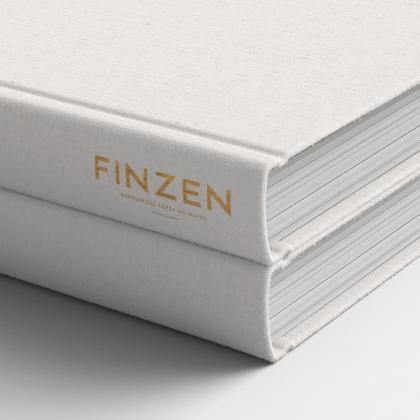 Identyfikacja wizualna dla firmy Finzen